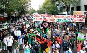 marcha-1-marihuana-2013-cordoba